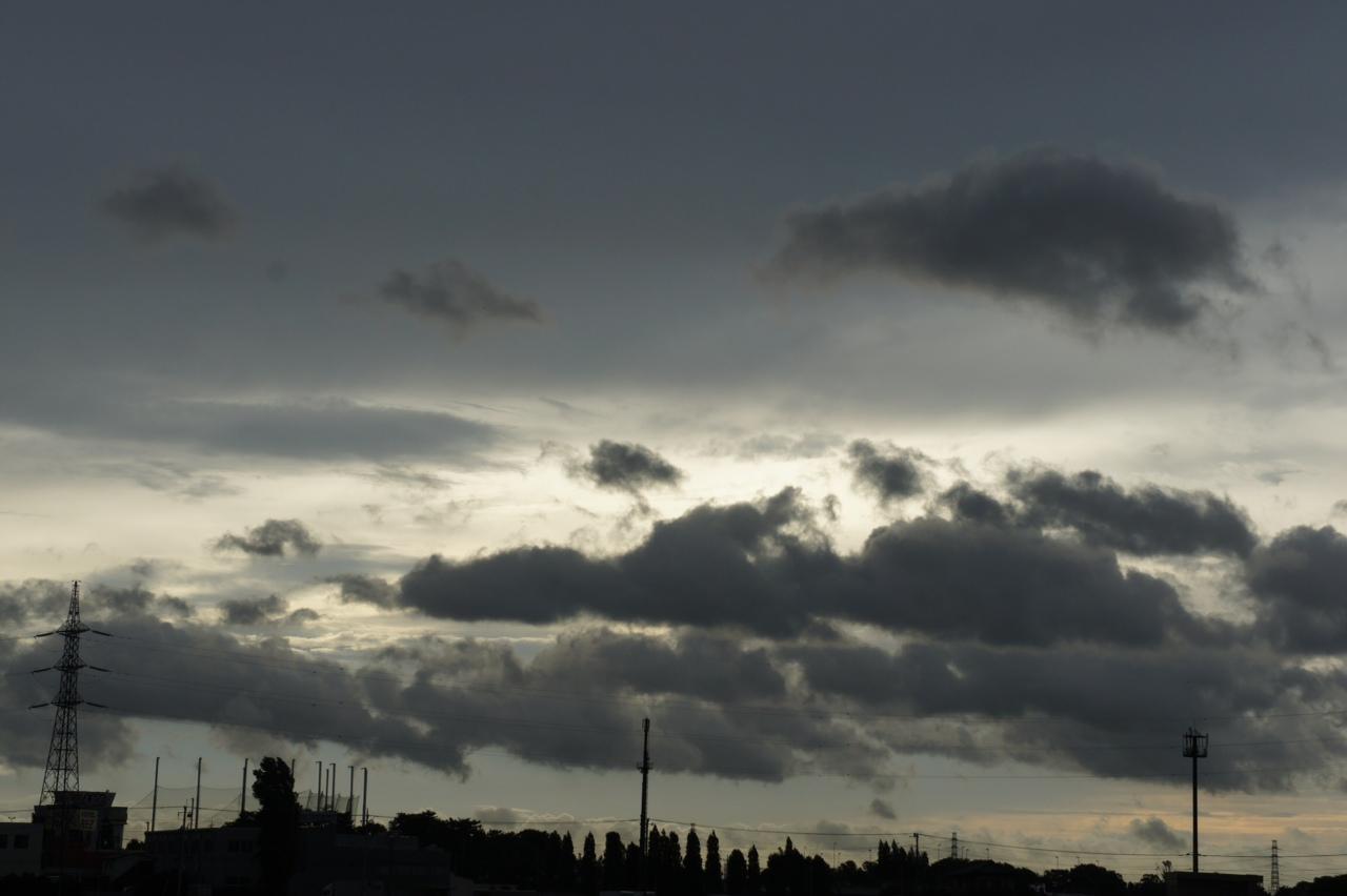 Good morning 強風に雨、さてさて。